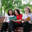 Stock Photo: Students preparing for exams