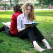 Stock Photo: Student learning in park