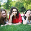 Fresh on the grass in the summer — Stock Photo