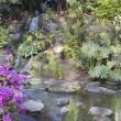 Foto de Stock  : Waterfall at Crystal Springs Rhododendron Garden