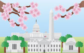 Washington DC Landmarks with Cherry Blossom — Stock Vector