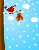 Christmas Partridge on a Pear Tree Winter Scene — Stock Photo
