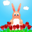 Happy Easter Bunny Rabbit on Field of Tulips Flowers — Stock Photo