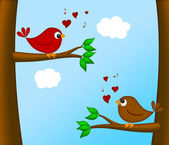 Valentines Day Lovebirds Pair Sitting on Tree — Stock Photo