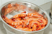 Cooked Prawns with Shell in Strainer — Stock Photo
