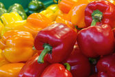Red Yellow and Green Bell Peppers — Stock Photo