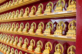 Chinese Temple of One Hundred Thousand Buddhas — Stock Photo