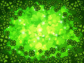 Shamrock Four Leaf Clover Background — Stock Photo