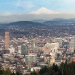 Portland Oregon Downtown Cityscape and Mt Hood — Stock Photo