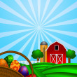 Easter Eggs Basket with Red Barn on Green Pasture — Stock Photo #9524977