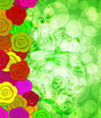 Colorful Roses Border with Blurred Background — Stockfoto