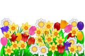 Illustrazione di fiori di primavera — Foto Stock