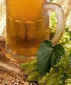 Szklanka piwa — Zdjęcie stockowe