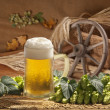 Still life with beer - Stock Photo