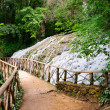 Waterfall at the Monasterio de Piedra — ストック写真
