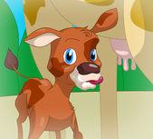 Cute calf — Stock Photo