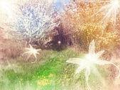 Garden paradise — Stock Photo