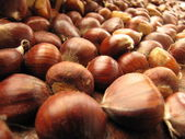 Italian chestnuts — Stock Photo