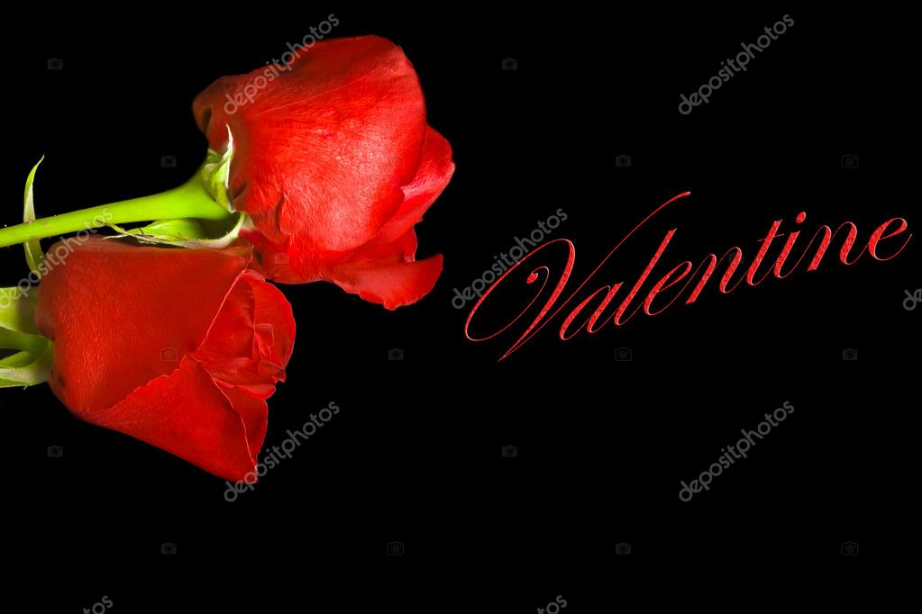 Two roses on black background with space for the text — Stock Photo #8555328