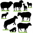Sheep and Lambs Silhouettes Set — Stock Vector