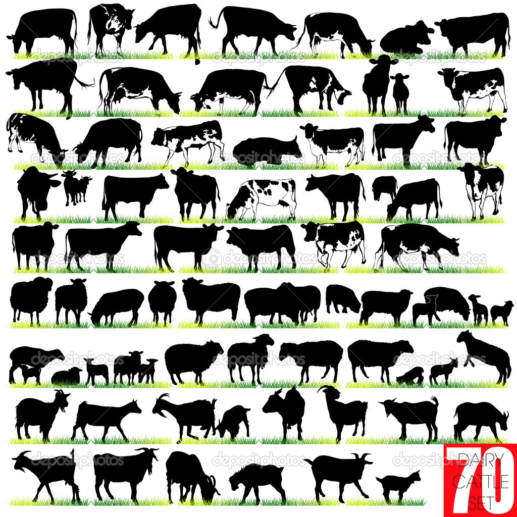 Dairy Cattle Calf Dairy Cattle Silhouettes Set