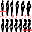 Постер, плакат: Men obesity evolution and pregnancy stages