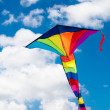 Colorful kite — Stock Photo
