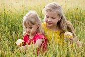 Sisters in field — Стоковое фото