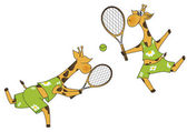 Giraffes tennis players — Stock Vector