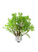 绿色能源 — 图库照片