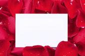 Rosas vermelhas com um cartão em branco — Foto Stock