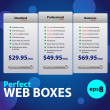 Stock Vector: Perfect Web Boxes Hosting Plans For Your Website