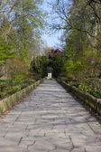 Pathway in Holland Park Leading to the Statue of Lord Holland — Stock Photo