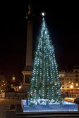 Christmas Tree in London's Trafalgar Square — Stock Photo