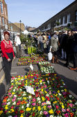 Columbia Road Flower Market — Stock Photo