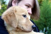 Teen Boy And Golden Puppy 3 — Stock Photo