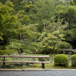 Japanese traditional garden in kyoto japan - Stock Photo