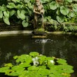 Garden pond detail — Stock Photo #10401053