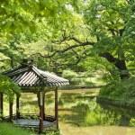 Garden pond in seoul south korea — Stock Photo #10487805