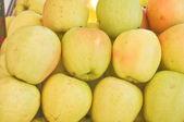 Owoce jabłko — Zdjęcie stockowe