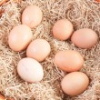 Eggs in wicker basket - Stock Photo
