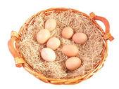 Eggs in wicker basket — 图库照片