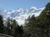 Bernina, Švýcarsko — Stock fotografie