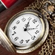 Pocket watch — Stock Photo #9906670