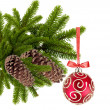Stock Photo: Christmas ball on tree isolated on white background