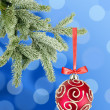 Christmas ball on the tree over blue background — Stock Photo