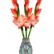 Beautiful red gladiolus in vase isolated on white background — Stock Photo