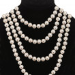 Stock Photo: Pearl necklace on black mannequin isolated on white background