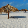 Wonderful beach of Cayo Largo — Stock Photo