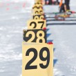 Biathlon — Stock Photo